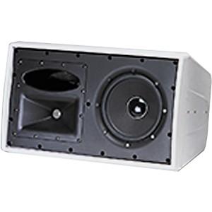 JBL C29AV-1 Control 2-Way Indoor/Outdoor Speaker by JBL