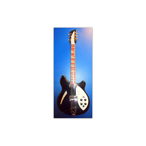 Rickenbacker CARL WILSON SIGNATURE Hollow Body Electric Guitar-thumbnail