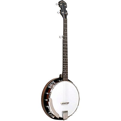 Gold Tone CC-BG Bluegrass Banjo Starter Pack-thumbnail