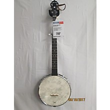 Gold Tone CCOT Banjo