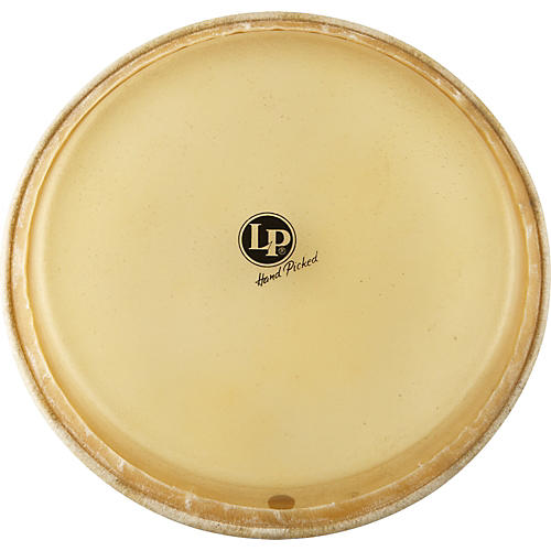 LP Conga Head 12.5 in.