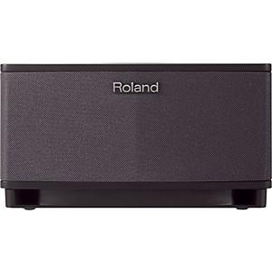 Roland Cube Lite 10 Watt Guitar Combo Amp