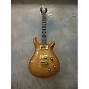 PRS Custom 22 Artist Pack Brazillian Fingerboard Solid Body Electric Guitar