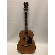 Ayers D-04 Acoustic Electric Guitar