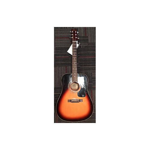 Washburn D-10 TS Acoustic Guitar