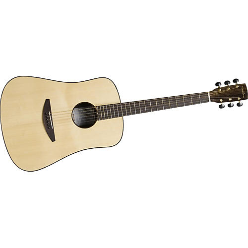 Baden D-Style Rosewood Dreadnought Ellipse Aura Acoustic-Electric Guitar