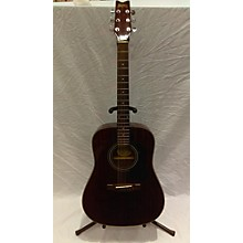 Washburn D10MTWR Acoustic Guitar
