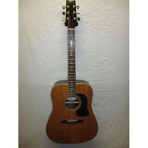 Washburn D10SDL Acoustic Guitar