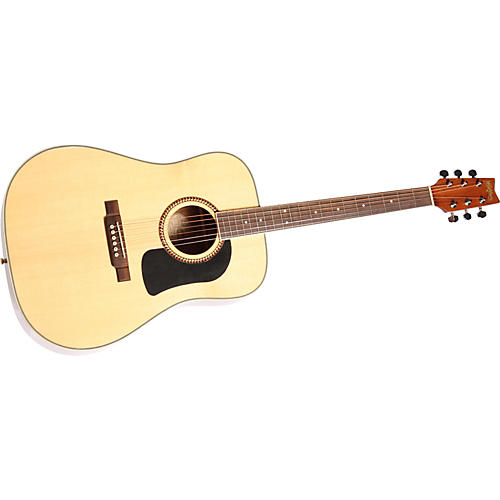 Washburn D10SRK Dreadnought Acoustic Guitar