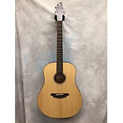 Breedlove D200SMP Passport Acoustic Guitar