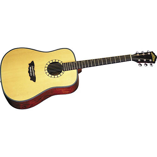 Washburn D46S Acoustic Guitar