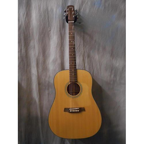 Walden D550 Acoustic Guitar
