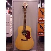 Walden D610 Acoustic Guitar