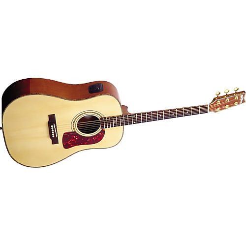 Washburn DK20T Dreadnought Acoustic Guitar