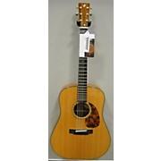 Breedlove DM Custom Acoustic Guitar