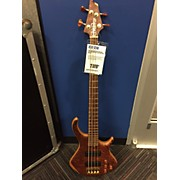 Warrior DRAN MICHAEL CUSTOM Electric Bass Guitar