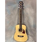Ibanez DTMAN Acoustic Guitar