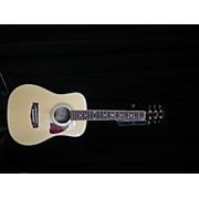 Ibanez DTMANT Acoustic Guitar