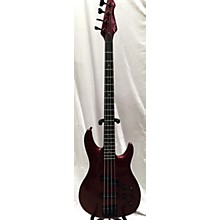 Peavey DYNA BASS UNITY SERIES Electric Bass Guitar