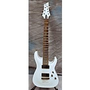 Schecter Guitar Research Demon 7 String Solid Body Electric Guitar