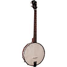 Recording King Dirty 30's Tenor Banjo