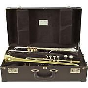 Double Trumpet Case