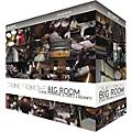 Sony Drums from the Big Room: The Mixes  Thumbnail