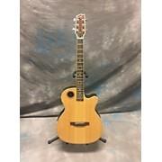 Boulder Creek ECRM2-N Acoustic Electric Guitar