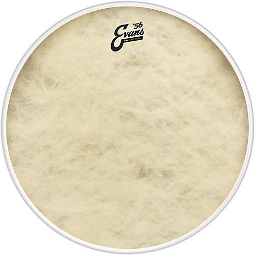 Evans EQ4 Calftone Bass Drum Head 18 in.