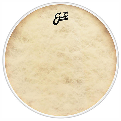 Evans EQ4 Calftone Tom Hoop Drum Head-thumbnail