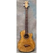 Dean EQABA GN Acoustic Bass Acoustic Bass Guitar