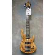 BRYSTON LTD. ESP Electric Bass Guitar