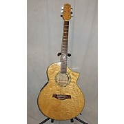 Ibanez EW10ASE Acoustic Electric Guitar