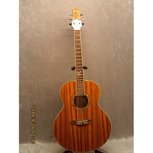 Ibanez EW20ASE Acoustic Electric Guitar Natural