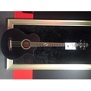 Ibanez EWB10ASEOBK Acoustic Bass Guitar