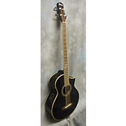 Ibanez EWB20 Acoustic Bass Guitar Acoustic Bass Guitar