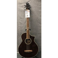 Ibanez EWB20 Acoustic Bass Guitar