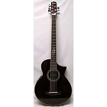 Ibanez EWB205 Acoustic Bass Guitar