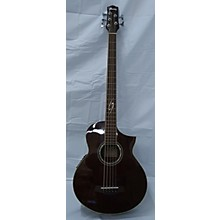 Ibanez EWB205WNE 5 String Acoustic Bass Guitar