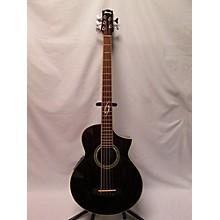 Ibanez EWB205WNE-NT 1202 Acoustic Bass Guitar