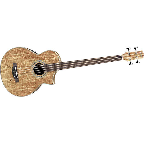 Ibanez EWB20SMFE Exotic Woods Acoustic-Electric Fretless Bass Guitar-thumbnail