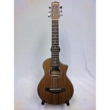 Ibanez EWP14OPN Acoustic Guitar