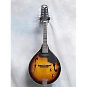 Rogue Electric Mandolin Mandolin