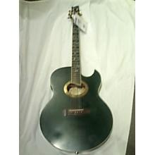 Ibanez Euphoria Acoustic Electric Guitar