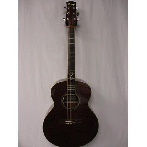 Ibanez Ew20qm Acoustic Guitar