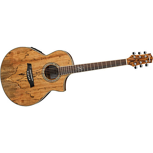 Ibanez Exotic Wood Series EW20SGE Acoustic-Electric Guitar-thumbnail