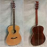 Washburn F21 Acoustic Guitar