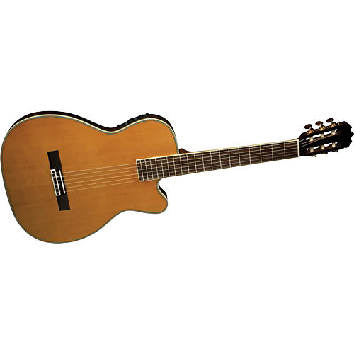 Alvarez FCC7603 Fusion Chambered Classical Acoustic-Electric Guitar with Fishman Aura IC
