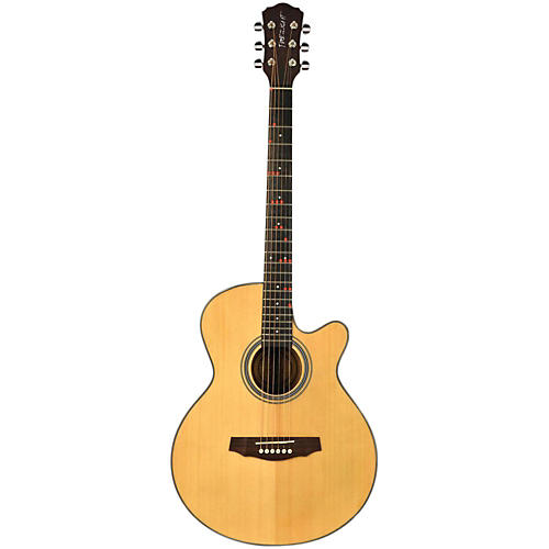 Fretlight FG-507 Acoustic Guitar with Built-in Lighted Learning System