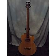 Johnson FRETLESS ACOUSTIC BASS Acoustic Bass Guitar